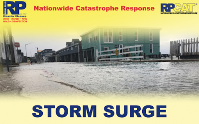 Storm Surge Preparedness: What You Need to Know